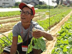 耕作放棄地を開拓して日本の農業を何とかする