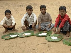 インド郊外の村にモリンガを栽培して子供たちの栄養不足改善と雇用拡大を目指す