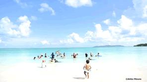竹富島のコンドイビーチを守る