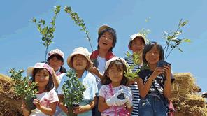 苗木から育てて植樹する津波から命を守る活動を支援する