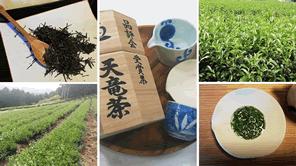 浅蒸し茶と深蒸し茶の違いは何?