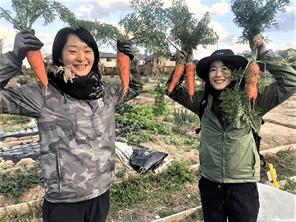 生ごみを資源化して野菜を作る取り組みを一歩ずつ