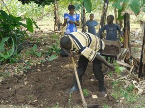 ウガンダへのトラクター1台導入で学校に行ける子供が増える